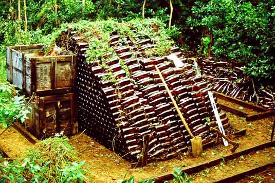 Huge pile of beer bottles in jungle